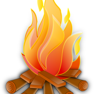 Госдума не примет предложения по противопожарной безопасности