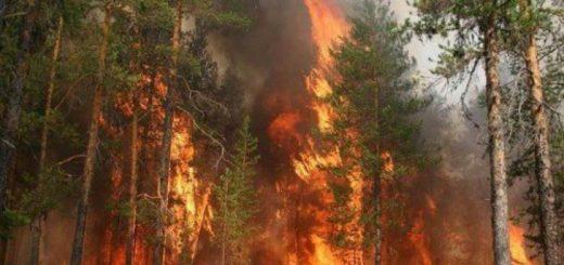 Независимая экспертиза основных причин возникновения пожаров в быту: что это такое