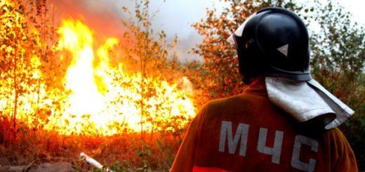 Экономический ущерб от пожара: общая информация