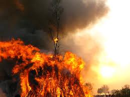 Суть пожарной экспертизы